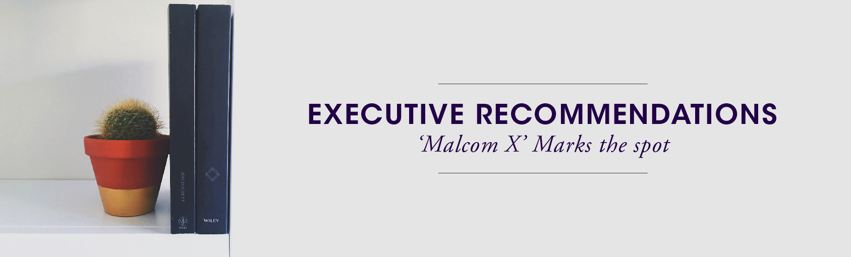 Executive Recommendations: Malcom X Marks the Spot banner